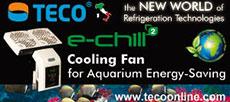 Teco Banner